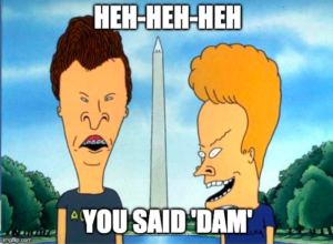 "Beavis and Butthead at Washington Monument. Caption: ""Heh heh heh, You Said DAM"""